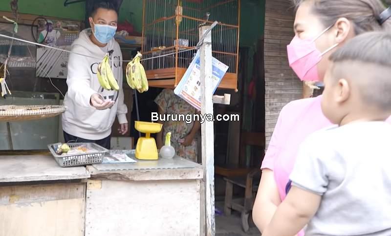 Baim Wong Borong Burung Murah Dihujat (youtube.com)