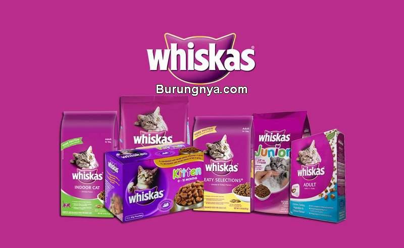 Kelebihan dan Kekurangan Makanan Kucing Whiskas (facebook.com)