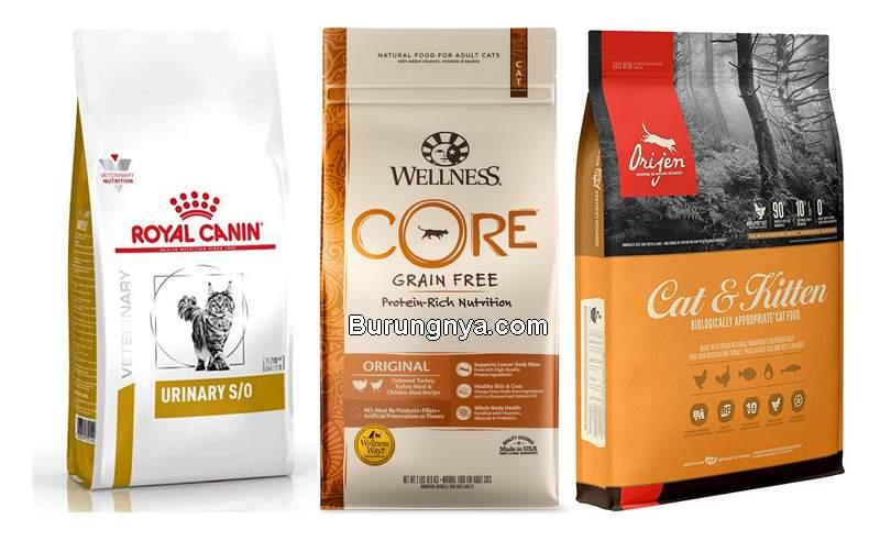 Makanan Kucing Premium Termahal di Indonesia (chewy.com)