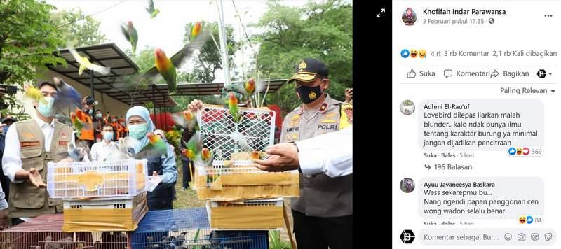Gubernur Khofifah Lepaskan Burung Lovebird (facebook.com)