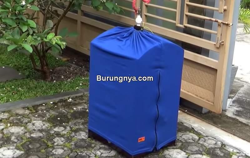 Terapi Sauna untuk Cendet atau Pentet (youtube.com)