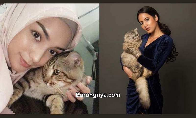 Artis Indonesia Pecinta Kucing (instagram.com)