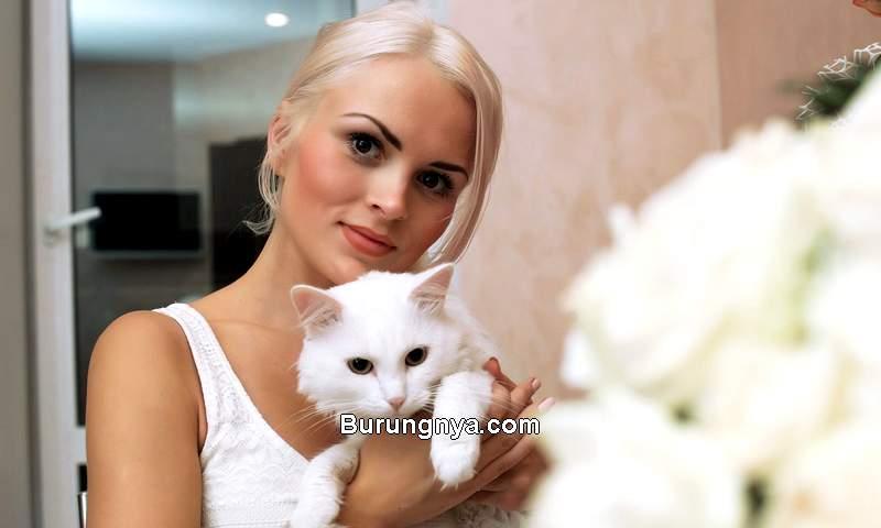 Kucing yang Pintar Mencari Perhatian Wanita (bestsmartquotes.com)