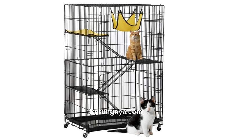 Cara Memilih Kandang Kucing Terbaik Nyaman dan Aman (alltoptenreviews.com)