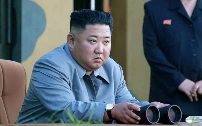 Kim Jong-un Musnahkan Kucing dan Burung Merpati (usni.org)
