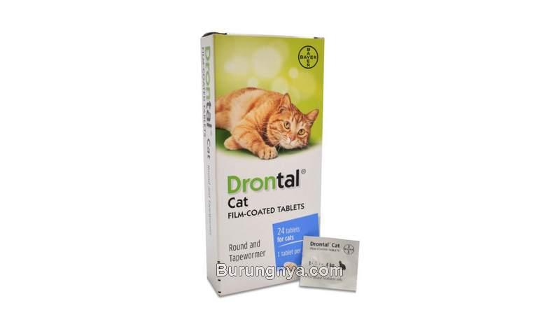 Obat Cacing Kucing Drontal Cat (fanevalleystores.com)