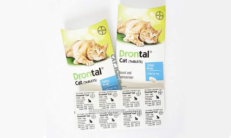 Obat Drontal Cat Obat Kucing Cacingan (shopee.co.id)