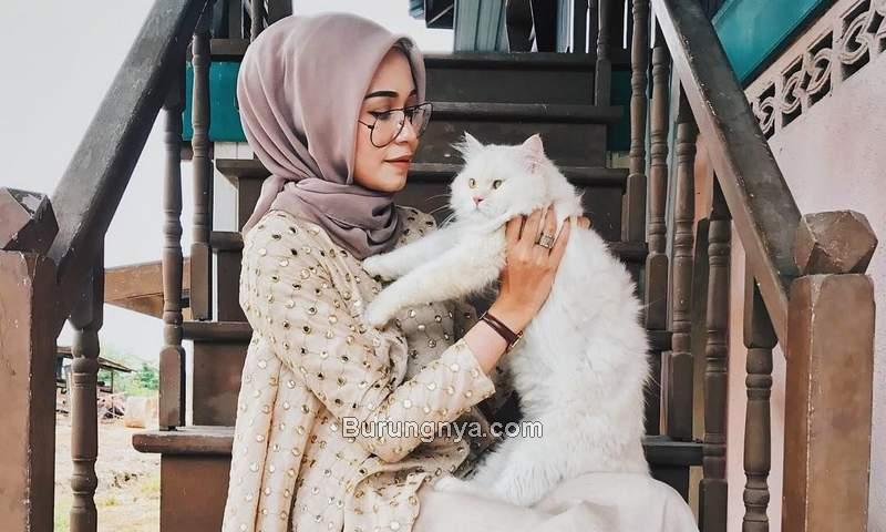 Pahala Memelihara Kucing dalam Islam (pinterest.com)
